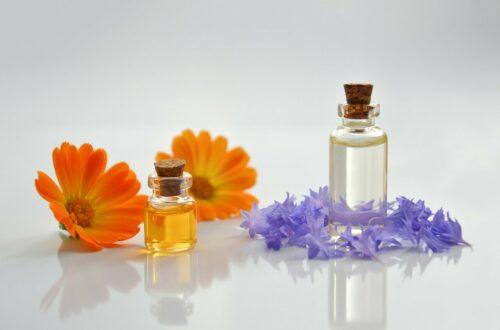 Heilpflanzen zur Handpflege und trockene Haut ab dem Herbst